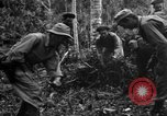 Image of 158th Infantry 2nd Battalion Arawe New Britain Papua New Guinea, 1943, second 35 stock footage video 65675071780