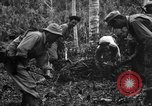 Image of 158th Infantry 2nd Battalion Arawe New Britain Papua New Guinea, 1943, second 36 stock footage video 65675071780