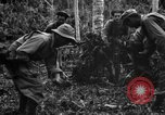Image of 158th Infantry 2nd Battalion Arawe New Britain Papua New Guinea, 1943, second 37 stock footage video 65675071780