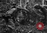 Image of 158th Infantry 2nd Battalion Arawe New Britain Papua New Guinea, 1943, second 39 stock footage video 65675071780