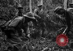 Image of 158th Infantry 2nd Battalion Arawe New Britain Papua New Guinea, 1943, second 40 stock footage video 65675071780