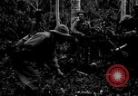 Image of 158th Infantry 2nd Battalion Arawe New Britain Papua New Guinea, 1943, second 41 stock footage video 65675071780