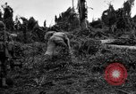 Image of 158th Infantry 2nd Battalion Arawe New Britain Papua New Guinea, 1943, second 46 stock footage video 65675071780