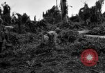 Image of 158th Infantry 2nd Battalion Arawe New Britain Papua New Guinea, 1943, second 47 stock footage video 65675071780