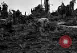 Image of 158th Infantry 2nd Battalion Arawe New Britain Papua New Guinea, 1943, second 48 stock footage video 65675071780