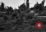 Image of 158th Infantry 2nd Battalion Arawe New Britain Papua New Guinea, 1943, second 49 stock footage video 65675071780