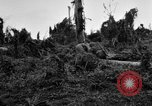 Image of 158th Infantry 2nd Battalion Arawe New Britain Papua New Guinea, 1943, second 51 stock footage video 65675071780