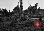 Image of 158th Infantry 2nd Battalion Arawe New Britain Papua New Guinea, 1943, second 52 stock footage video 65675071780
