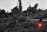Image of 158th Infantry 2nd Battalion Arawe New Britain Papua New Guinea, 1943, second 53 stock footage video 65675071780