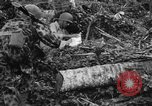 Image of 158th Infantry 2nd Battalion Arawe New Britain Papua New Guinea, 1943, second 57 stock footage video 65675071780