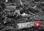 Image of 158th Infantry 2nd Battalion Arawe New Britain Papua New Guinea, 1943, second 59 stock footage video 65675071780