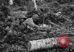 Image of 158th Infantry 2nd Battalion Arawe New Britain Papua New Guinea, 1943, second 60 stock footage video 65675071780