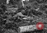 Image of 158th Infantry 2nd Battalion Arawe New Britain Papua New Guinea, 1943, second 61 stock footage video 65675071780