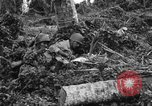 Image of 158th Infantry 2nd Battalion Arawe New Britain Papua New Guinea, 1943, second 62 stock footage video 65675071780