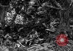 Image of communication activities Peleliu Palau Islands, 1945, second 2 stock footage video 65675071792