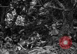 Image of communication activities Peleliu Palau Islands, 1945, second 7 stock footage video 65675071792
