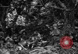 Image of communication activities Peleliu Palau Islands, 1945, second 8 stock footage video 65675071792