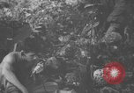 Image of communication activities Peleliu Palau Islands, 1945, second 37 stock footage video 65675071792