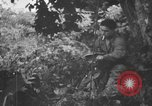 Image of communication activities Peleliu Palau Islands, 1945, second 43 stock footage video 65675071792