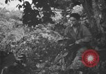 Image of communication activities Peleliu Palau Islands, 1945, second 44 stock footage video 65675071792