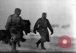 Image of Cairo and Teheran Conferences European Theater, 1944, second 22 stock footage video 65675071829