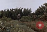 Image of United States 9th Infantry Division South Vietnam, 1967, second 26 stock footage video 65675071837