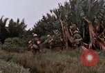 Image of United States 9th Infantry Division South Vietnam, 1967, second 30 stock footage video 65675071837
