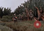 Image of United States 9th Infantry Division South Vietnam, 1967, second 31 stock footage video 65675071837