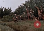 Image of United States 9th Infantry Division South Vietnam, 1967, second 32 stock footage video 65675071837