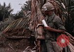 Image of United States 9th Infantry Division South Vietnam, 1967, second 38 stock footage video 65675071837