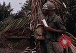 Image of United States 9th Infantry Division South Vietnam, 1967, second 40 stock footage video 65675071837