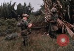 Image of United States 9th Infantry Division South Vietnam, 1967, second 43 stock footage video 65675071837