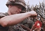 Image of United States 9th Infantry Division South Vietnam, 1967, second 55 stock footage video 65675071837