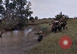 Image of United States 9th Infantry Division South Vietnam, 1967, second 46 stock footage video 65675071838