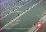 Image of Helmand River Project Afghanistan, 1979, second 32 stock footage video 65675071858