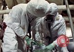 Image of asbestos United States USA, 1980, second 25 stock footage video 65675071894