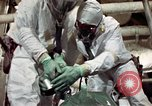 Image of asbestos United States USA, 1980, second 29 stock footage video 65675071894