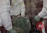 Image of asbestos United States USA, 1980, second 54 stock footage video 65675071894