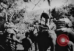 Image of OSS interrogate Japanese Burma, 1944, second 4 stock footage video 65675072042