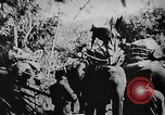 Image of OSS interrogate Japanese Burma, 1944, second 6 stock footage video 65675072042