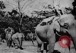 Image of OSS interrogate Japanese Burma, 1944, second 7 stock footage video 65675072042