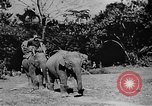 Image of OSS interrogate Japanese Burma, 1944, second 11 stock footage video 65675072042