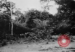 Image of OSS interrogate Japanese Burma, 1944, second 35 stock footage video 65675072042
