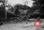 Image of OSS interrogate Japanese Burma, 1944, second 37 stock footage video 65675072042