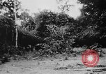 Image of OSS interrogate Japanese Burma, 1944, second 38 stock footage video 65675072042