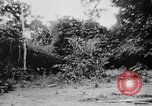 Image of OSS interrogate Japanese Burma, 1944, second 40 stock footage video 65675072042