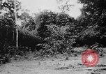 Image of OSS interrogate Japanese Burma, 1944, second 41 stock footage video 65675072042