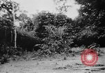 Image of OSS interrogate Japanese Burma, 1944, second 42 stock footage video 65675072042