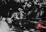 Image of OSS interrogate Japanese Burma, 1944, second 45 stock footage video 65675072042