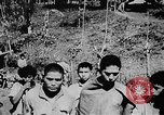 Image of OSS interrogation of captured Japanese Burma, 1944, second 13 stock footage video 65675072043